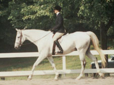 Louise showing at a hunter show