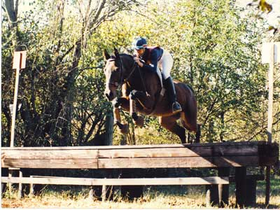 Louise jumping a cross county fence